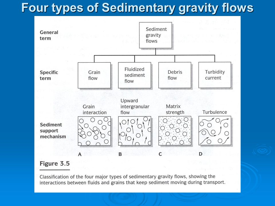Four types of Sedimentary gravity flows