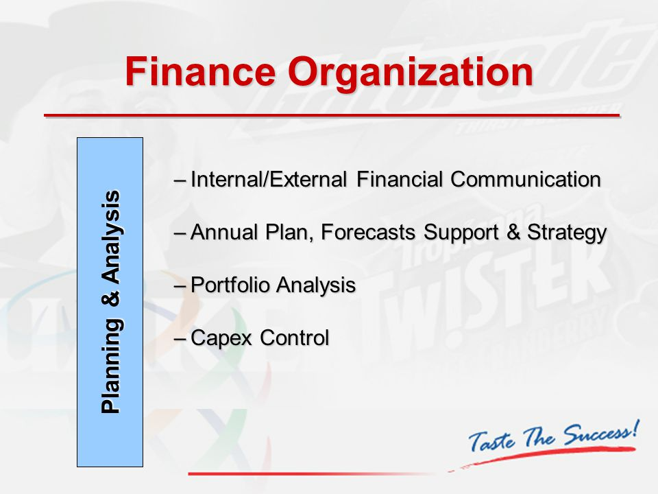 Finance Organization Planning & Analysis –Internal/External Financial Communication –Annual Plan, Forecasts Support & Strategy –Portfolio Analysis –Ca