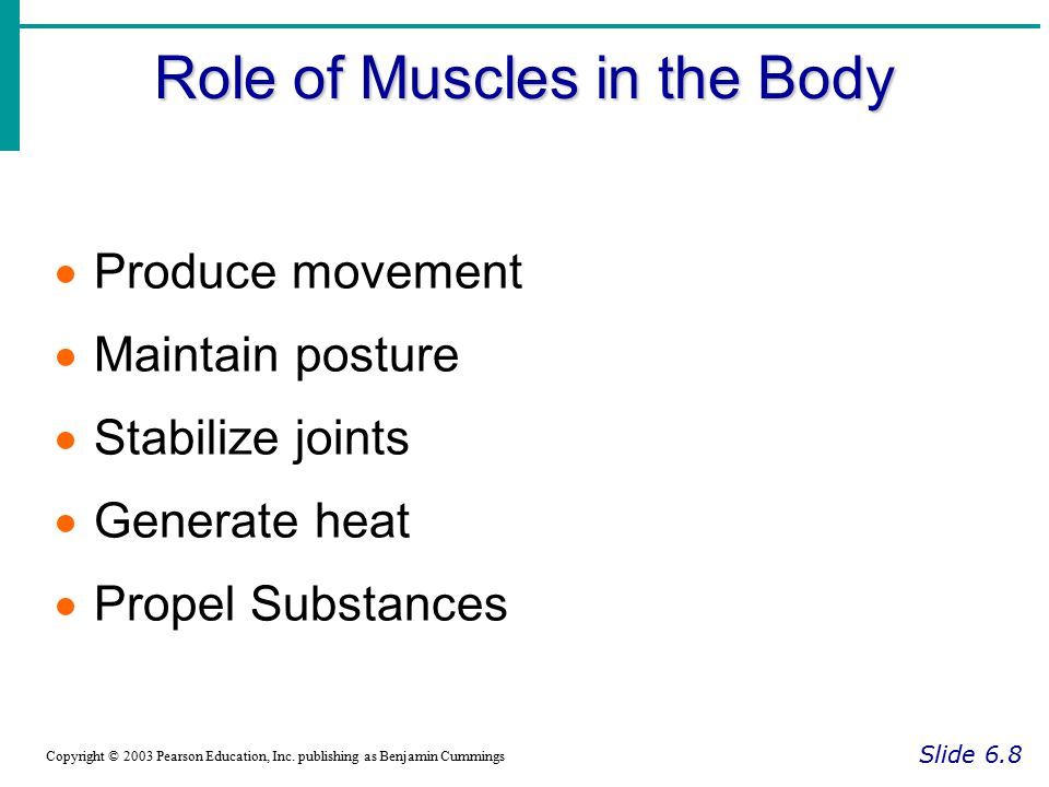 Types of Ordinary Body Movements Slide 6.32 Copyright © 2003 Pearson Education, Inc.