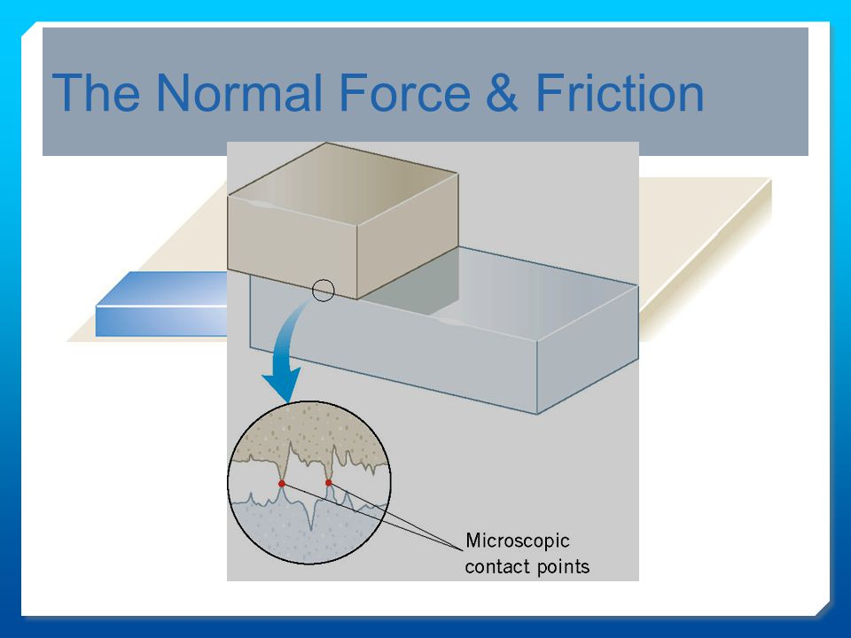 The Normal Force & Friction