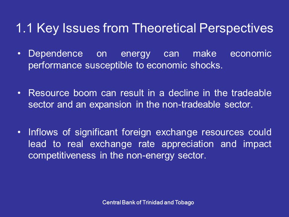 Central Bank of Trinidad and Tobago 1.1 Key Issues from Theoretical Perspectives Dependence on energy can make economic performance susceptible to economic shocks.