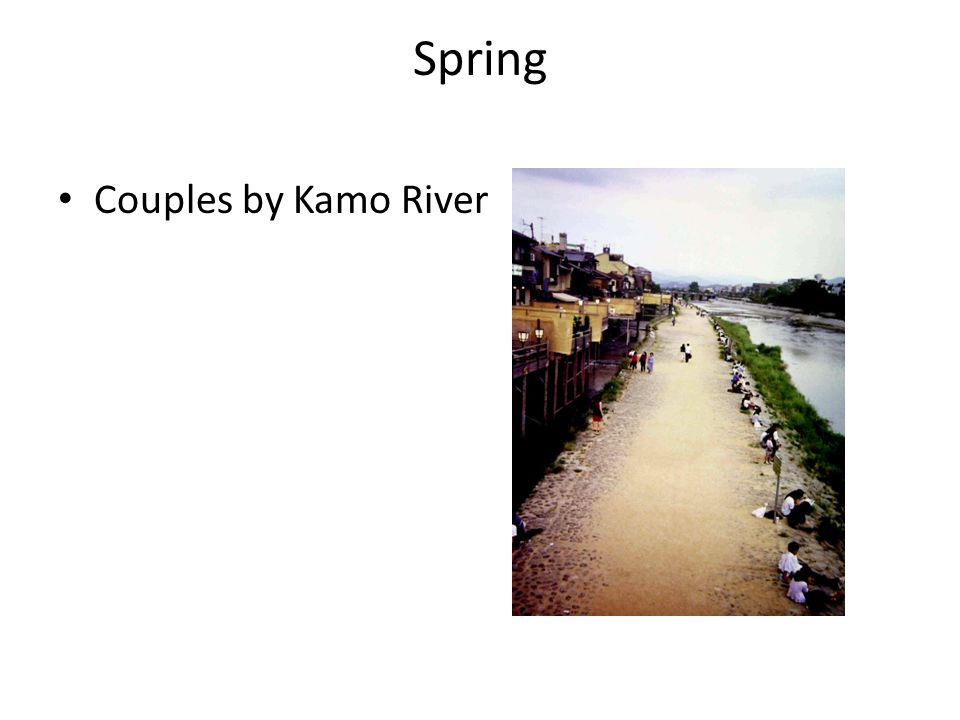 Spring Couples by Kamo River
