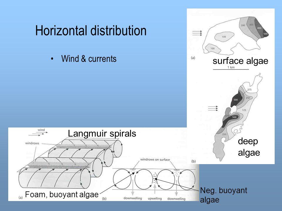 Horizontal distribution Wind & currents Langmuir spirals Foam, buoyant algae Neg. buoyant algae surface algae deep algae