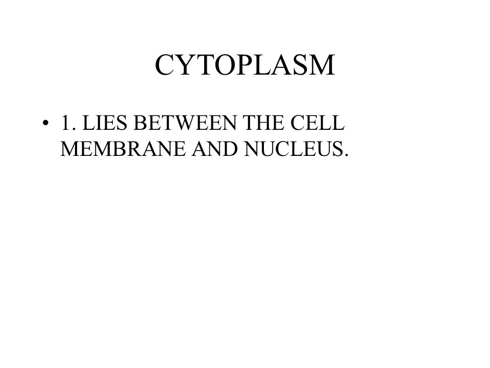 CYTOPLASM 1. LIES BETWEEN THE CELL MEMBRANE AND NUCLEUS.
