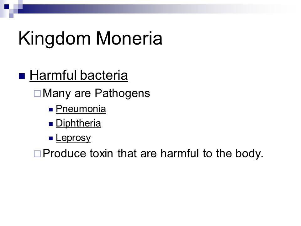 Kingdom Moneria Harmful bacteria  Many are Pathogens Pneumonia Diphtheria Leprosy  Produce toxin that are harmful to the body.