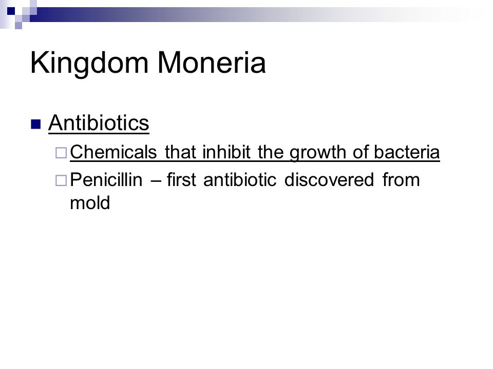 Kingdom Moneria Antibiotics  Chemicals that inhibit the growth of bacteria  Penicillin – first antibiotic discovered from mold