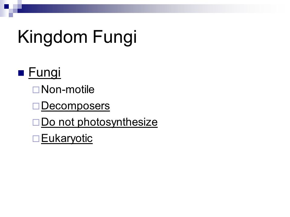 Kingdom Fungi Fungi  Non-motile  Decomposers  Do not photosynthesize  Eukaryotic