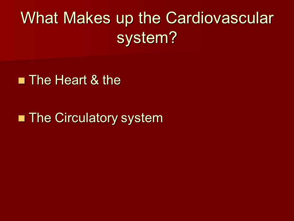 What Makes up the Cardiovascular system? The Heart & the The Heart & the The Circulatory system The Circulatory system