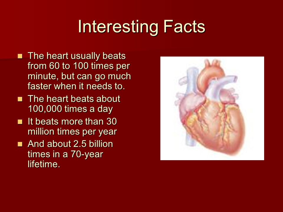 Interesting Facts The heart usually beats from 60 to 100 times per minute, but can go much faster when it needs to. The heart usually beats from 60 to