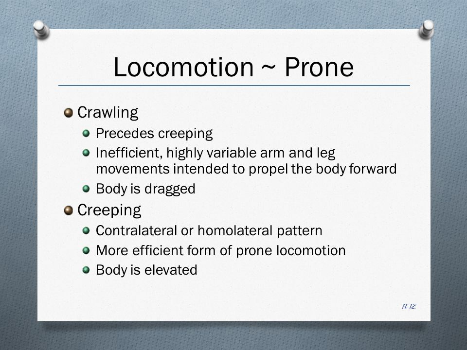 11-12 Locomotion ~ Prone Crawling Precedes creeping Inefficient, highly variable arm and leg movements intended to propel the body forward Body is dragged Creeping Contralateral or homolateral pattern More efficient form of prone locomotion Body is elevated