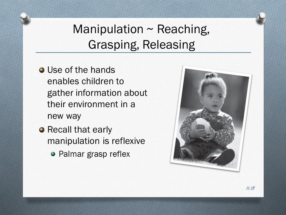 11-18 Manipulation ~ Reaching, Grasping, Releasing Use of the hands enables children to gather information about their environment in a new way Recall that early manipulation is reflexive Palmar grasp reflex