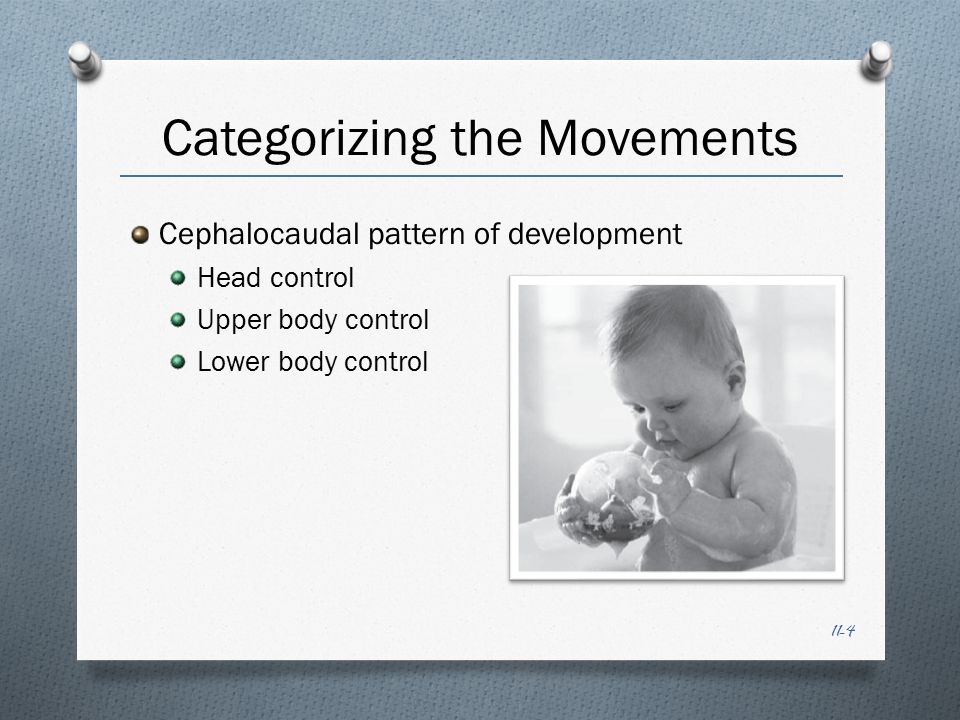 11-15 Locomotion ~ Upright Walking ~ the culmination of the acquisition of voluntary movement There is little evidence demonstrating that early walking will accelerate or refine future skill performance