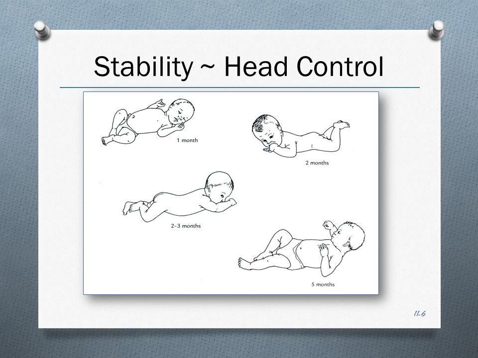 11-7 Stability ~ Body Control Chest elevation Segmented rolling back to front (vice versa) Crawling Ability to maintain upright posture frees the hands and arms for reaching and grasping