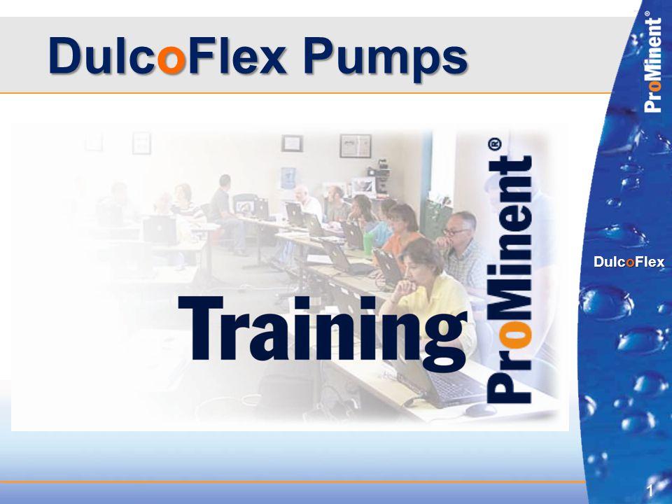 1 DulcoFlex DulcoFlex Pumps