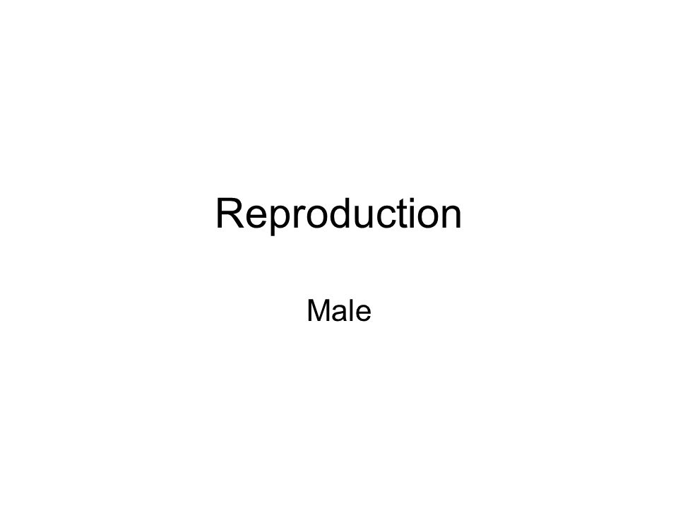 http://trc.ucdavis.edu/mjguinan/apc100/ modules/Reproductive/_topics.html