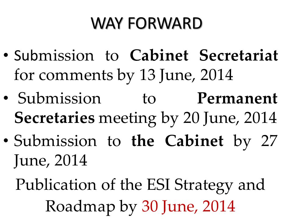 WAY FORWARD Sub mission to Cabinet Secretariat for comments by 13 June, 2014 Submission to Permanent Secretaries meeting by 20 June, 2014 Submission to the Cabinet by 27 June, 2014 Publication of the ESI Strategy and Roadmap by 30 June, 2014