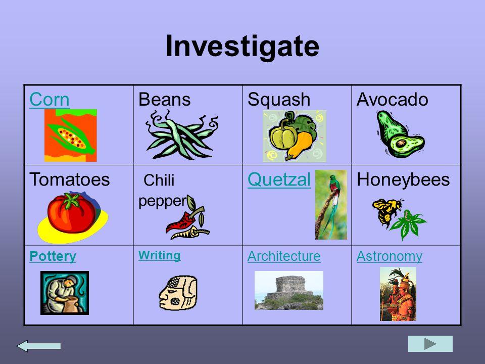 Investigate CornBeansSquashAvocado Tomatoes Chili peppers QuetzalHoneybees Pottery Writing ArchitectureAstronomy