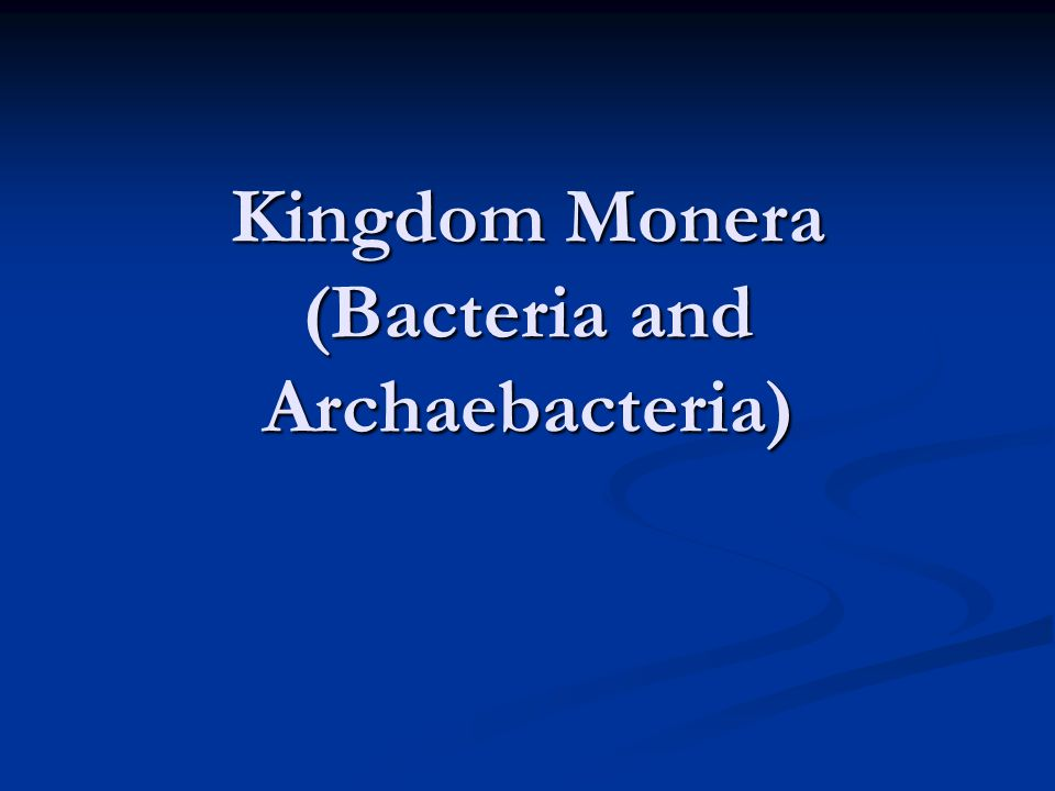 Kingdom Monera (Bacteria and Archaebacteria)