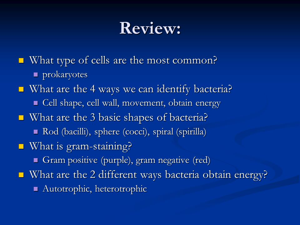 Review: What type of cells are the most common? What type of cells are the most common? prokaryotes prokaryotes What are the 4 ways we can identify ba