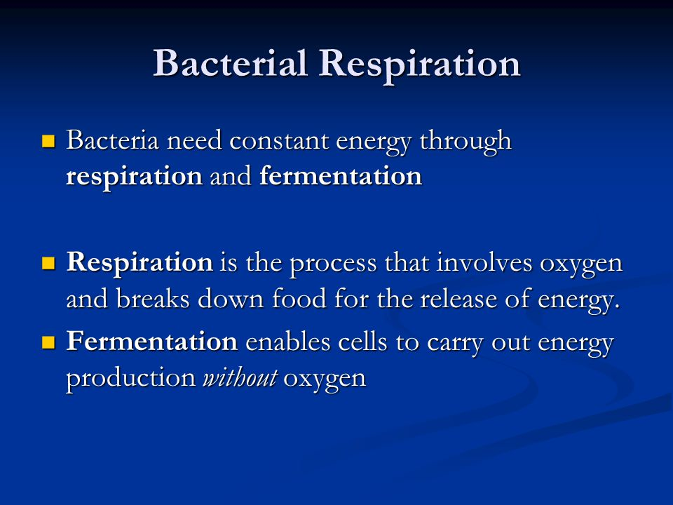 Bacterial Respiration Bacteria need constant energy through respiration and fermentation Bacteria need constant energy through respiration and ferment