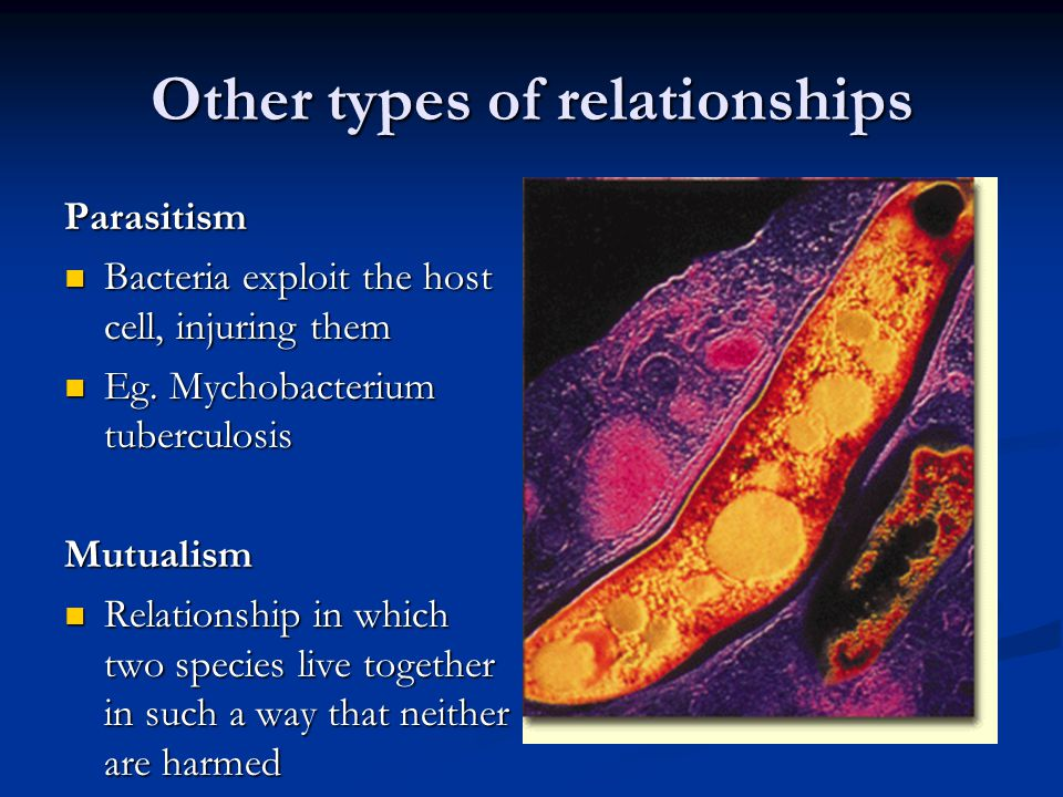 Other types of relationships Parasitism Bacteria exploit the host cell, injuring them Bacteria exploit the host cell, injuring them Eg. Mychobacterium