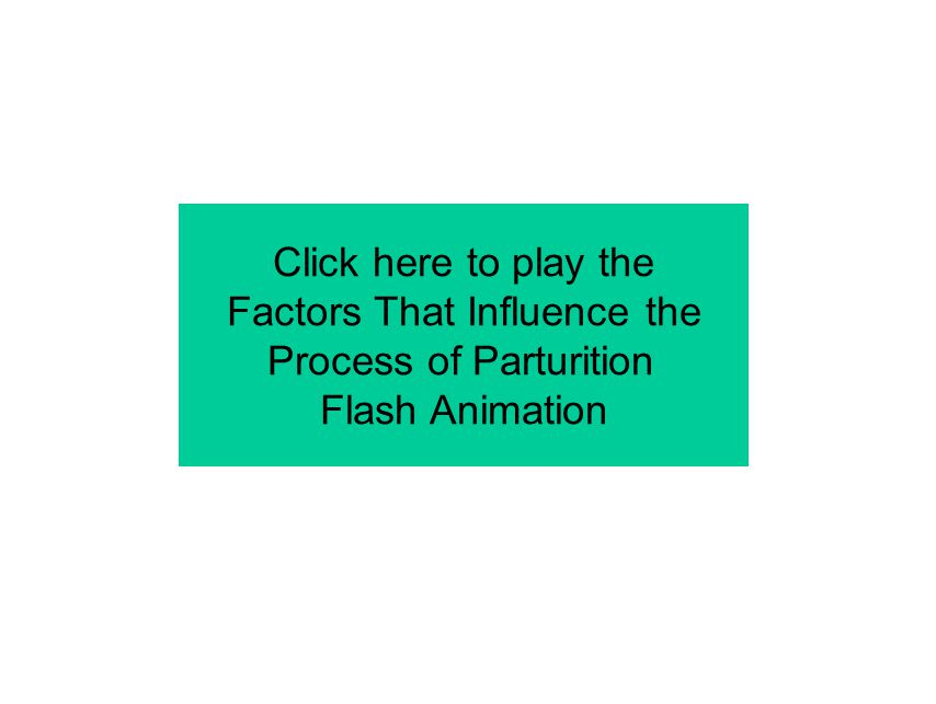 Click here to play the Factors That Influence the Process of Parturition Flash Animation