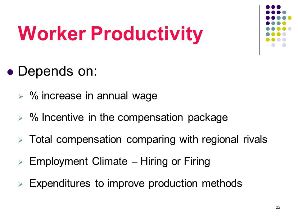 22 Worker Productivity Depends on:  % increase in annual wage  % Incentive in the compensation package  Total compensation comparing with regional rivals  Employment Climate – Hiring or Firing  Expenditures to improve production methods