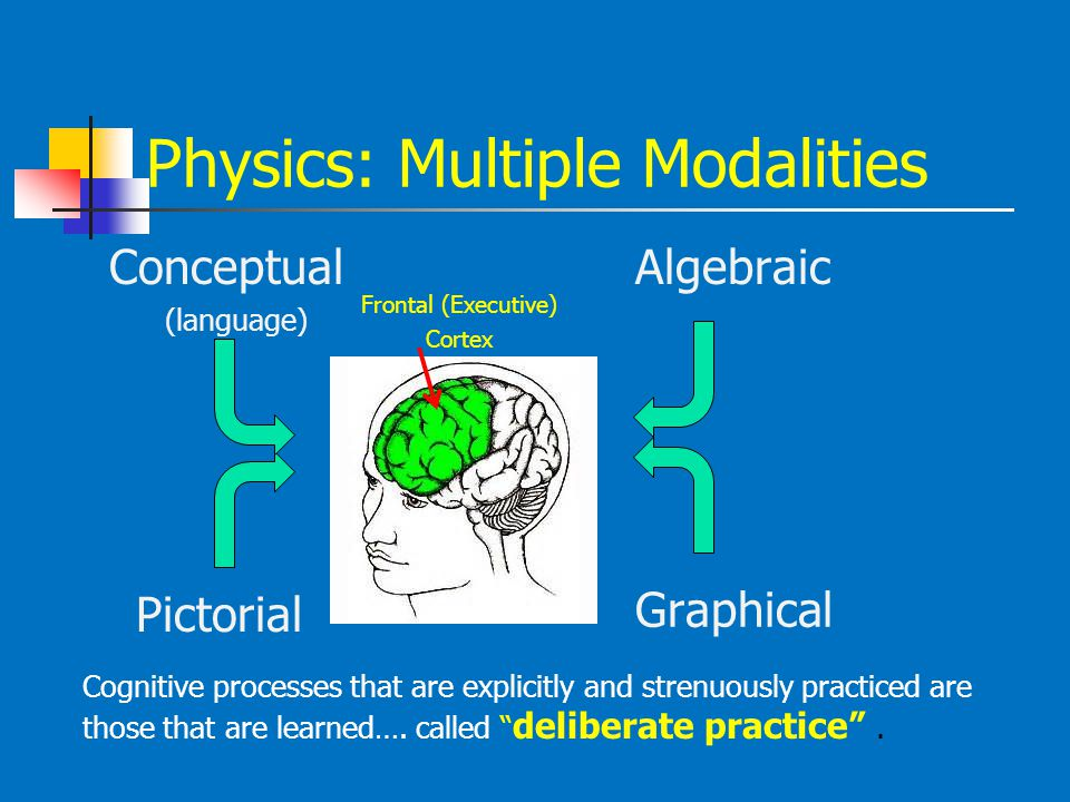 Physics: Multiple Modalities Conceptual (language) Algebraic Graphical Pictorial Frontal (Executive) Cortex Cognitive processes that are explicitly an