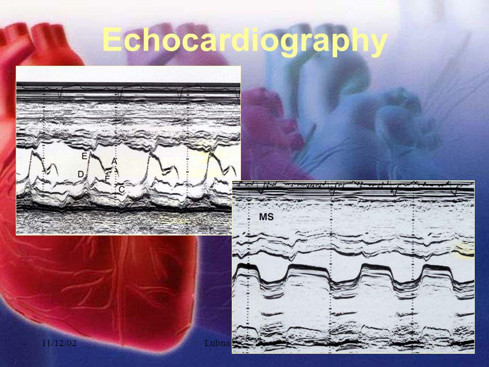 11/12/02Lubna Piracha, D.O.17 Echocardiography