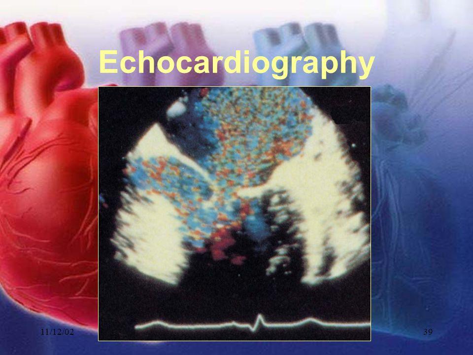 11/12/02Lubna Piracha, D.O.39 Echocardiography