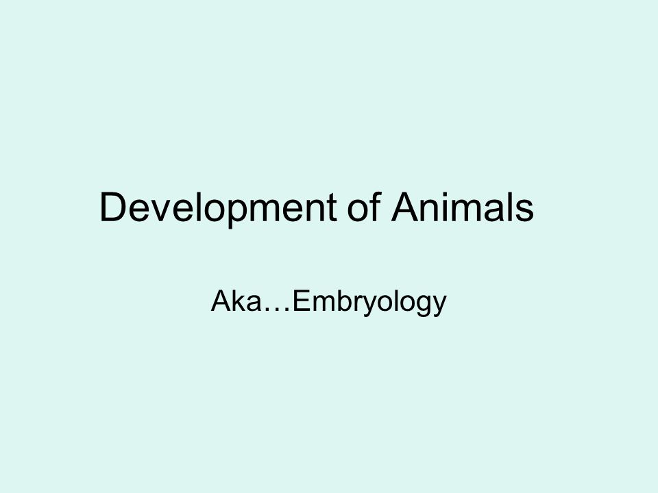 Development of Animals Aka…Embryology