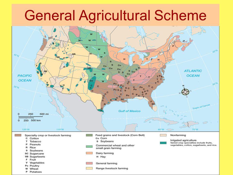 General Agricultural Scheme