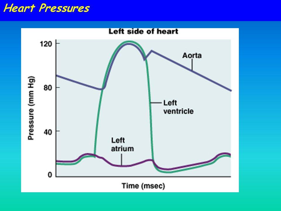Heart Pressures