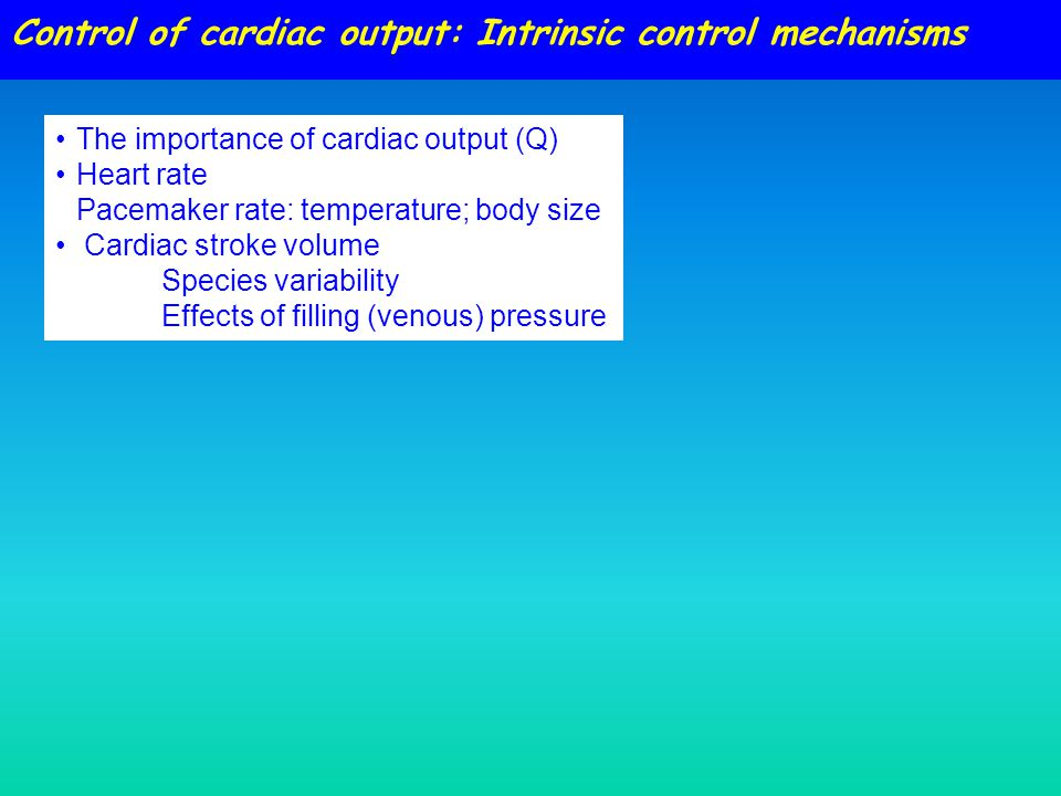 Control of cardiac output: Intrinsic control mechanisms The importance of cardiac output (Q) Heart rate Pacemaker rate: temperature; body size Cardiac stroke volume Species variability Effects of filling (venous) pressure