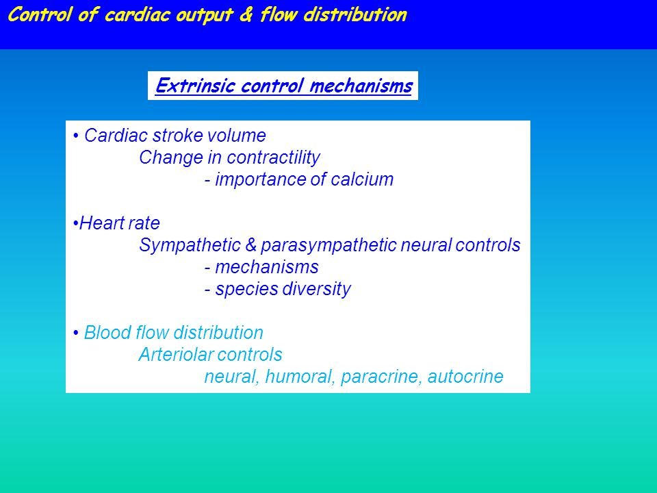Control of cardiac output & flow distribution Cardiac stroke volume Change in contractility - importance of calcium Heart rate Sympathetic & parasympathetic neural controls - mechanisms - species diversity Blood flow distribution Arteriolar controls neural, humoral, paracrine, autocrine Extrinsic control mechanisms
