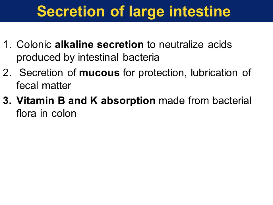 1.Colonic alkaline secretion to neutralize acids produced by intestinal bacteria 2. Secretion of mucous for protection, lubrication of fecal matter 3.