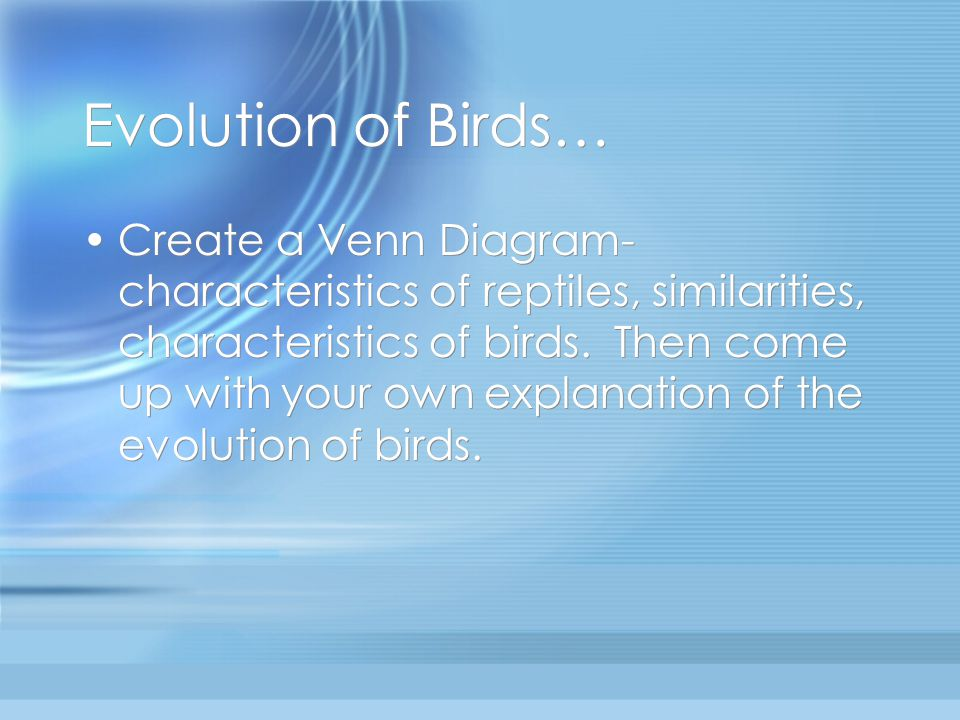 Evolution of Birds… Create a Venn Diagram- characteristics of reptiles, similarities, characteristics of birds. Then come up with your own explanation