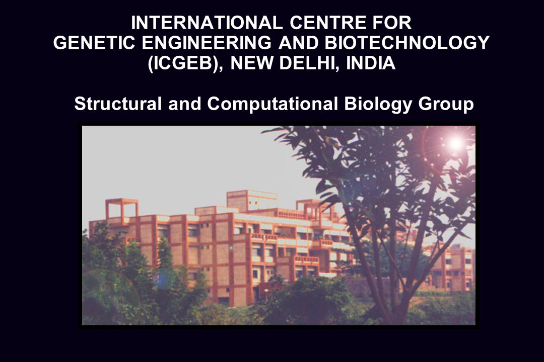 INTERNATIONAL CENTRE FOR GENETIC ENGINEERING AND BIOTECHNOLOGY (ICGEB), NEW DELHI, INDIA Structural and Computational Biology Group