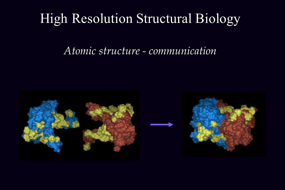 High Resolution Structural Biology Atomic structure - communication