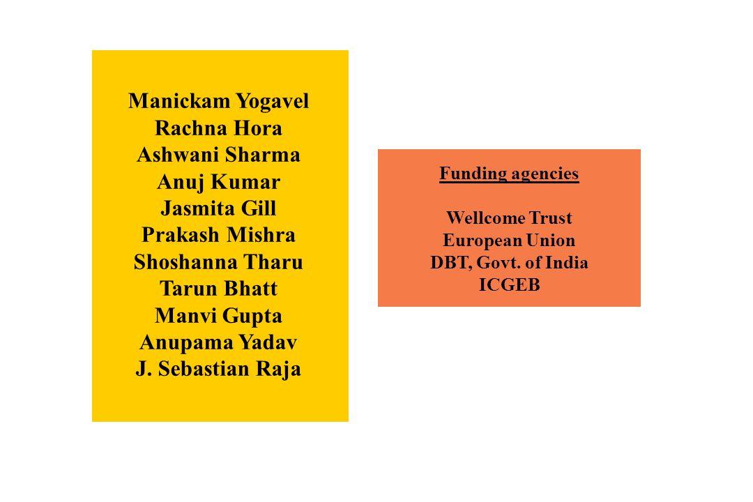 Funding agencies Wellcome Trust European Union DBT, Govt. of India ICGEB Manickam Yogavel Rachna Hora Ashwani Sharma Anuj Kumar Jasmita Gill Prakash M