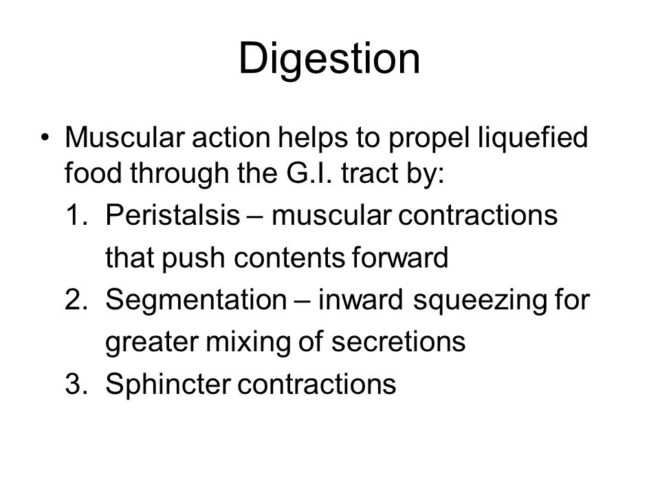 Digestion Muscular action helps to propel liquefied food through the G.I.