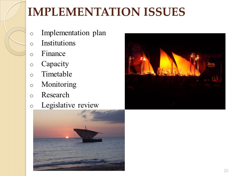 25 IMPLEMENTATION ISSUES o Implementation plan o Institutions o Finance o Capacity o Timetable o Monitoring o Research o Legislative review