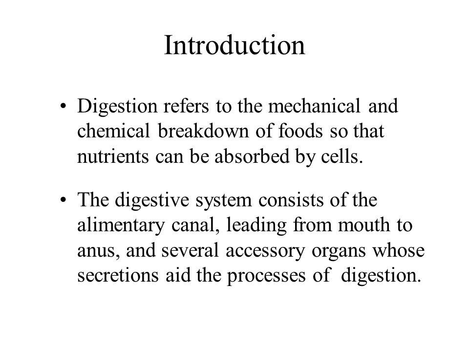 Small Intestine Parts of the Small Intestine –The small intestine consists of the duodenum, jejunum, and ileum.