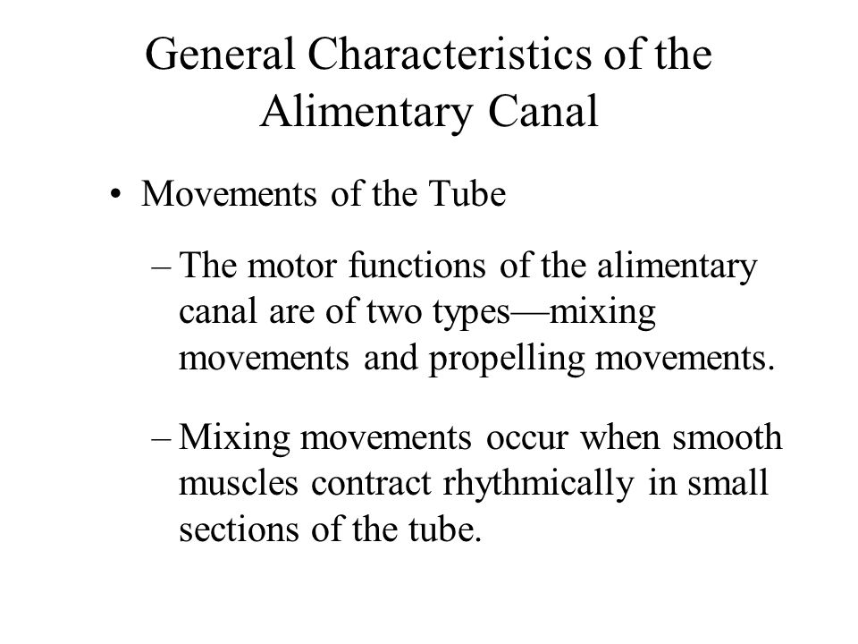 Large Intestine Movements of the Large Intestine –The movements of the large intestine are similar to those of the small intestine.