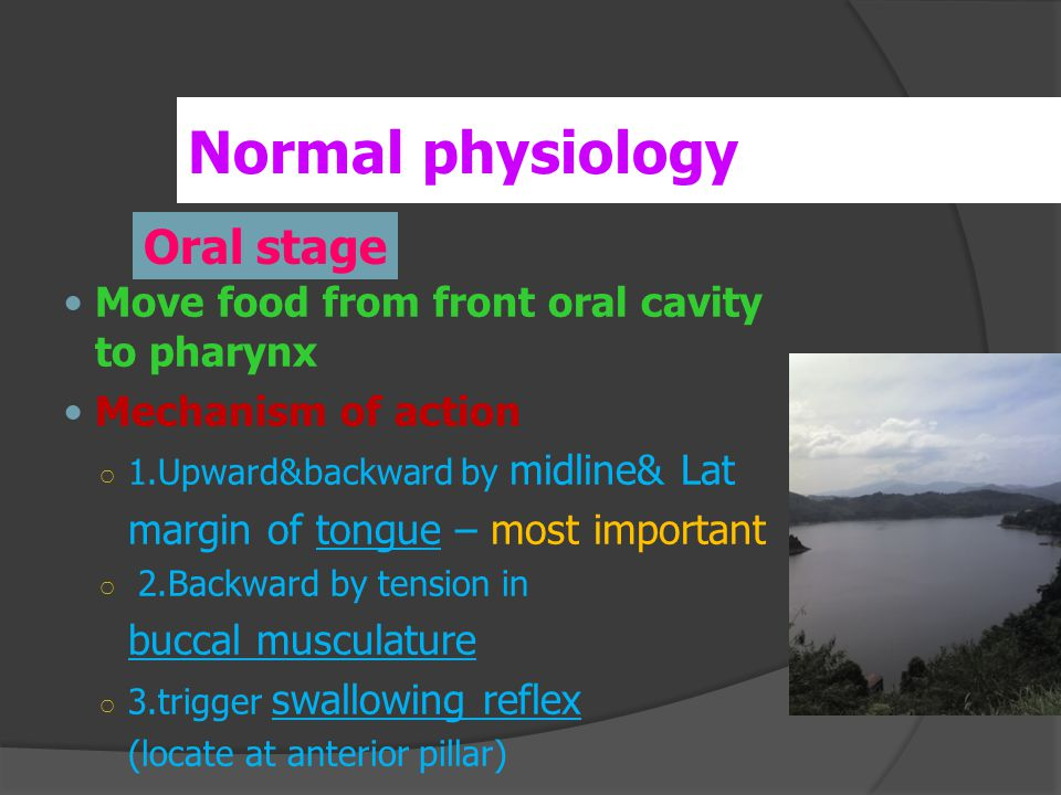 Move food from front oral cavity to pharynx Mechanism of action ○ 1.Upward&backward by midline& Lat margin of tongue – most important ○ 2.Backward by tension in buccal musculature ○ 3.trigger swallowing reflex (locate at anterior pillar) Normal physiology Oral stage