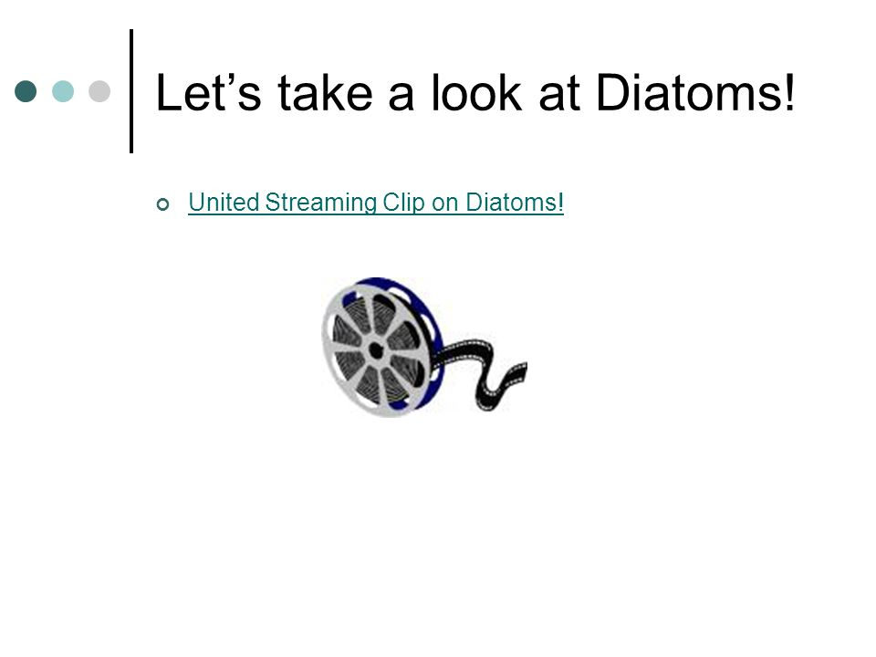 Let's take a look at Diatoms! United Streaming Clip on Diatoms!
