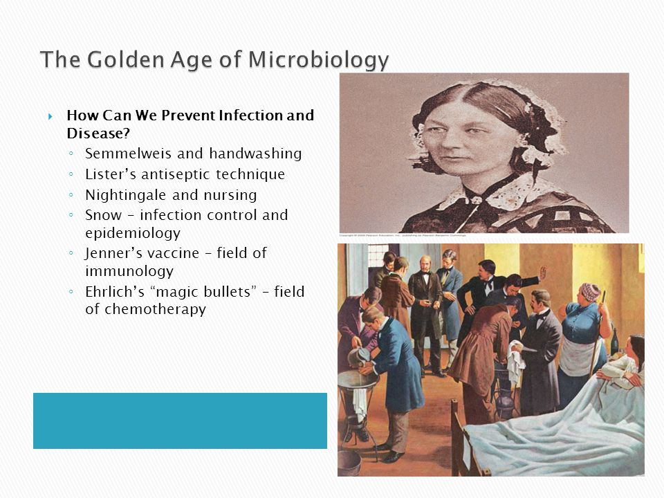  How Can We Prevent Infection and Disease? ◦ Semmelweis and handwashing ◦ Lister's antiseptic technique ◦ Nightingale and nursing ◦ Snow – infection
