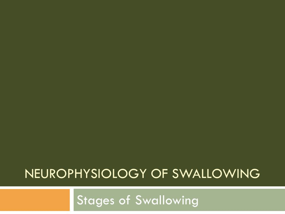 Pharyngeal Stage: Summary o The pharyngeal swallow response is triggered as the leading edge of the bolus passes the inferior rim of the mandible, although in younger persons the response may be triggered in the area of the faucial arches.