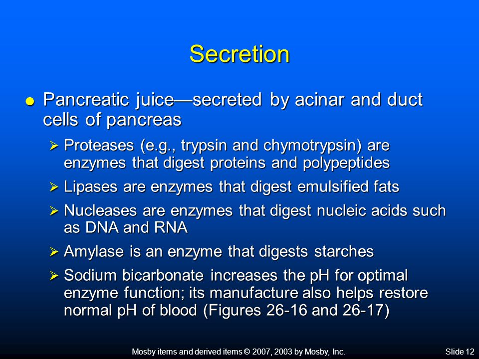 Mosby items and derived items © 2007, 2003 by Mosby, Inc.Slide 12 Secretion  Pancreatic juice—secreted by acinar and duct cells of pancreas  Proteas