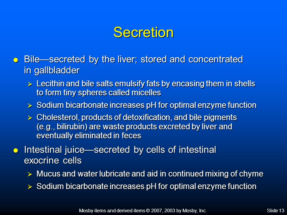 Mosby items and derived items © 2007, 2003 by Mosby, Inc.Slide 13 Secretion  Bile—secreted by the liver; stored and concentrated in gallbladder  Lec